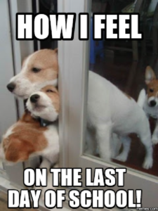 Meme of puppies struggling to fit through a slightly open door, with the caption How I Feel on the Last Day of School!
